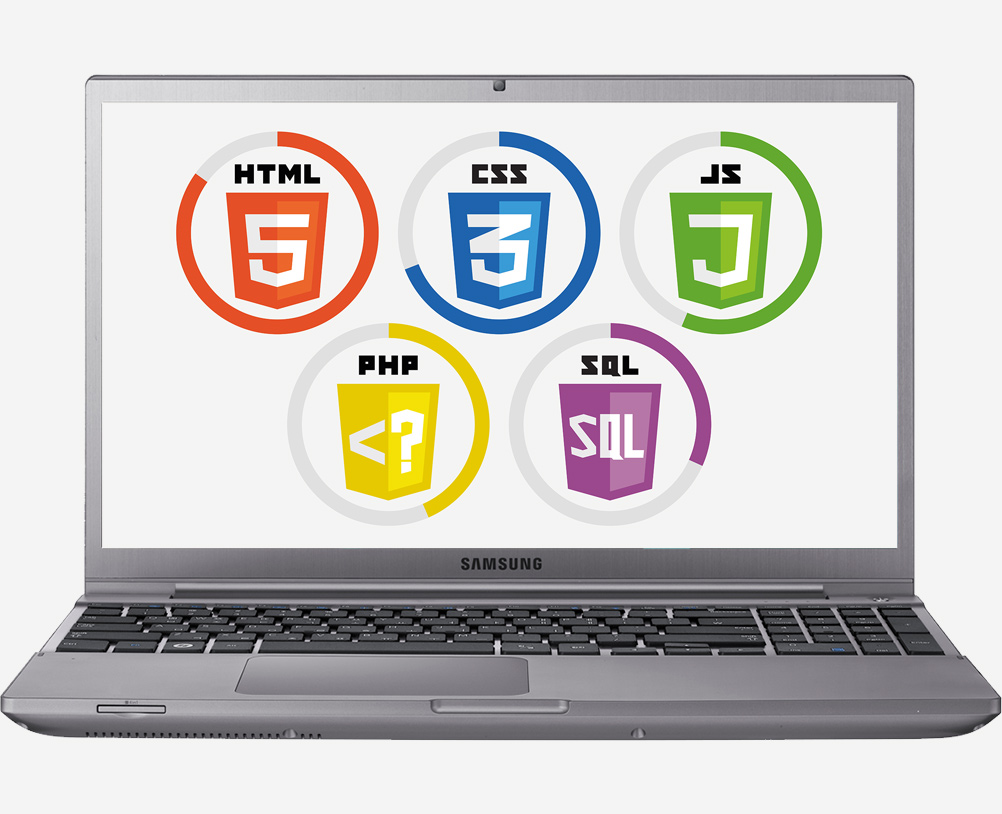 dinamik web tasarim hizmeti